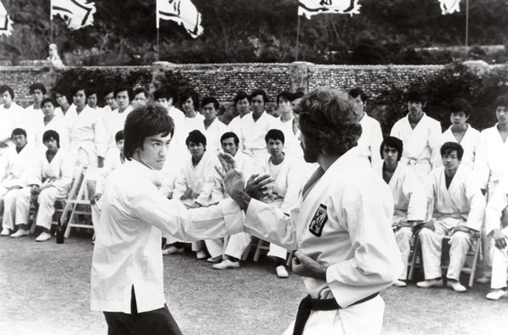 Top 10 Greatest Martial Arts Actors Ever