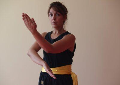 Wing Chun Chrysa 011 Medium