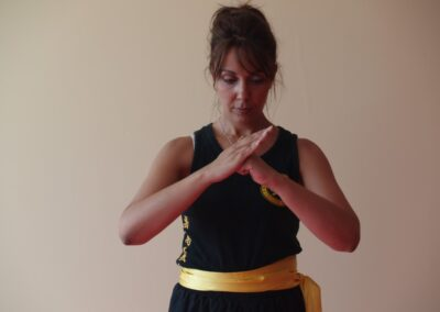 Wing Chun Chrysa 022 Medium